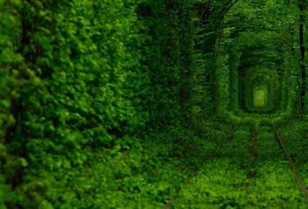 The_Tunnel_Of_Love_1